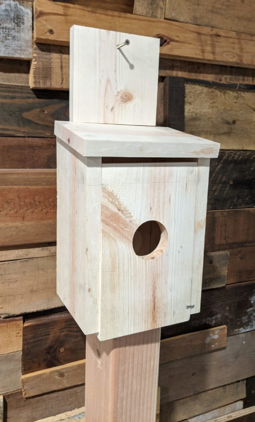Birdhouse (unfinished)